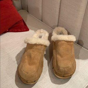 Ugg Heel clogs